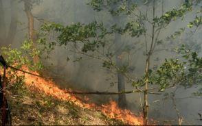 capture incendie Ardennes