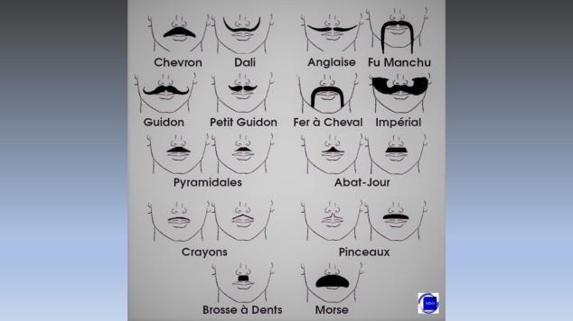 A chacun sa moustache
